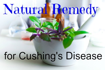 Learn more about this natural remedy